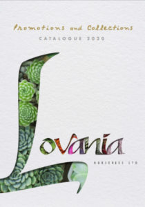 Lovania MAIN Catalogue 2020 Cover