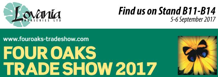 Lovania Four Oaks Show 2017