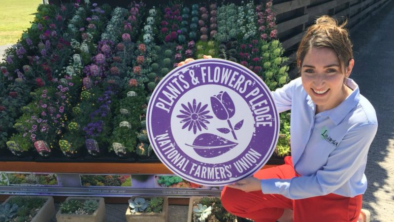 Lovania Aldi NFU Plants and Flowers Pledge