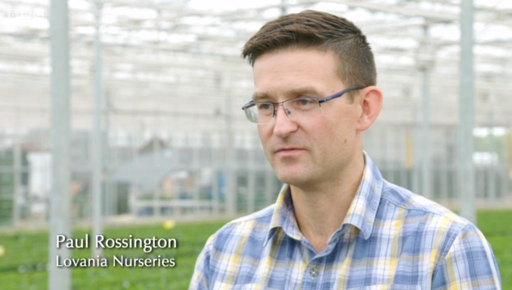 Paul Rossington, Head of Purchasing, Lovania Nurseries