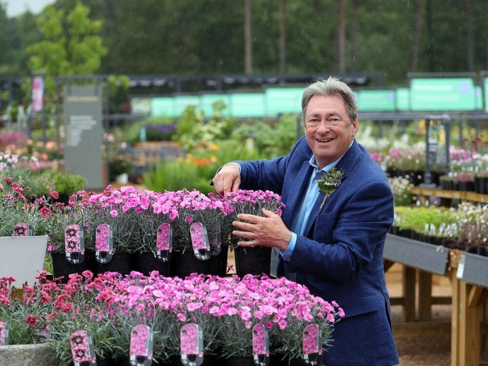 Alan Titchmarsh Specialist UK growers Dianthus Cherry Burst